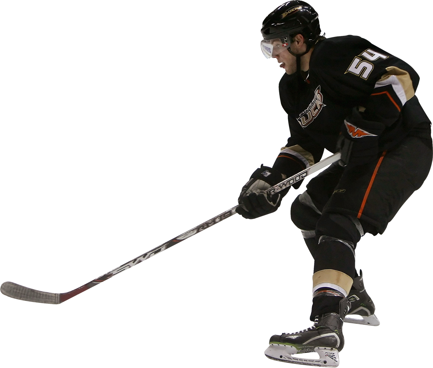 Image Result For Anaheim Ducks